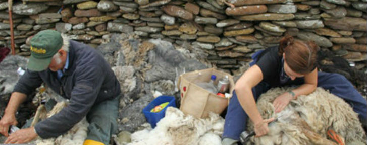 Wool Industry Export Promotion Council