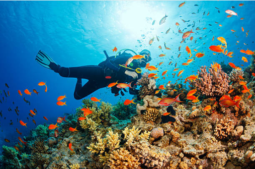 Scuba Diving - Activities at Langkawi