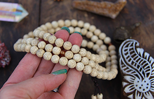 Make Jewellery from Seeds