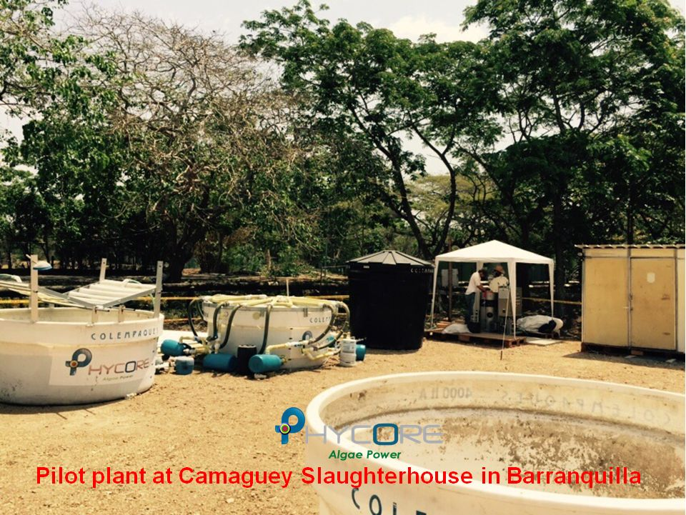 Camaguey Slaughter House, Barranquilla, Colombia