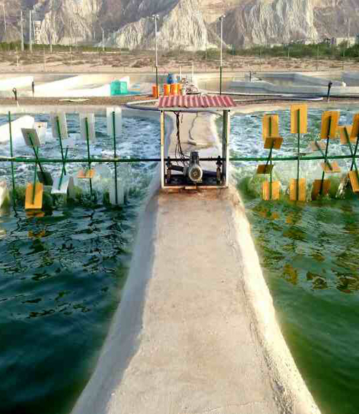 Iran's First Algal cultivation facility at Chabahar