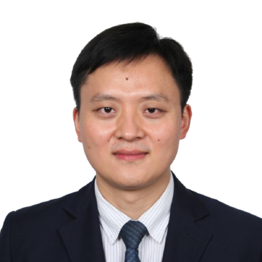 Professor Dr Qiang Xu