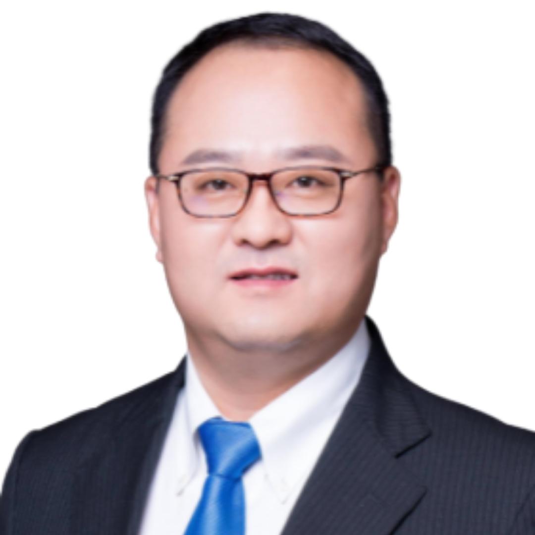 Prof Dr Dong Wang
